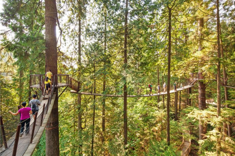 Private Vancouver Tour to Capilano Bridge & Grouse Mountain