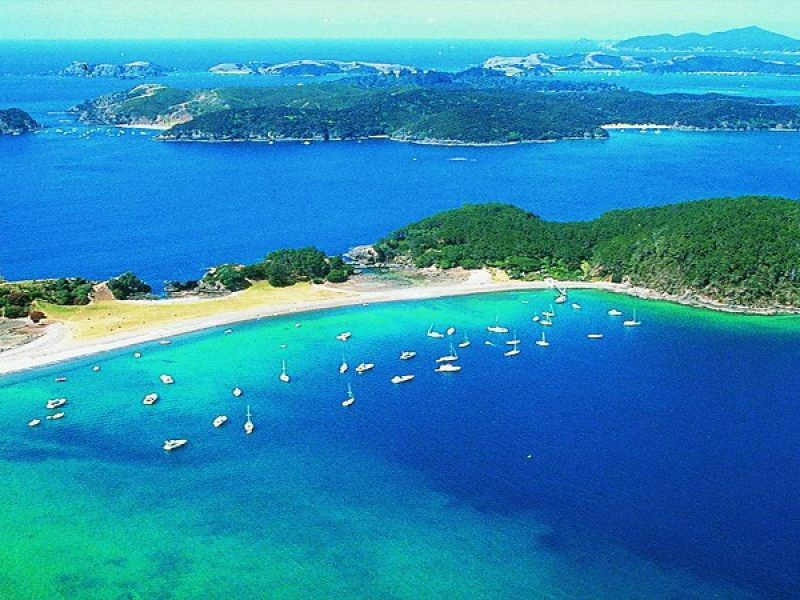 Bay of Islands Scenic Tour with Russell & Waitangi Treaty Grounds