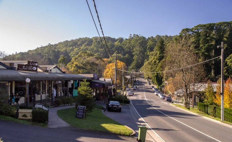Puffing Billy Railway Tour with Dandenongs Ranges National Park