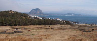 Jeju Olle Trail
