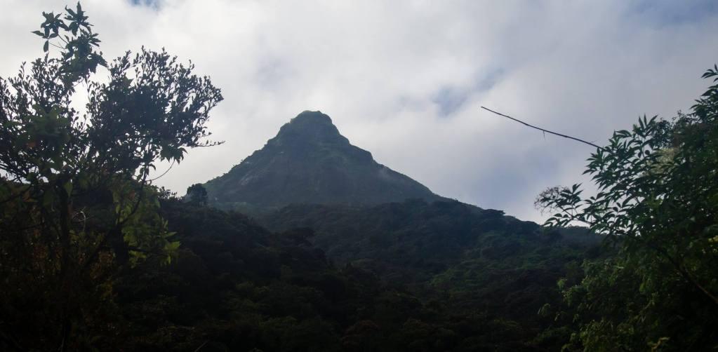 A shot from climbing Adam's peak in Sri Lanka