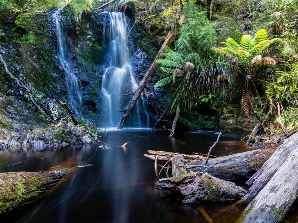 Beautiful Hogarth Falls, Tasmania