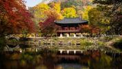 Autumn Colors at Naejangsan