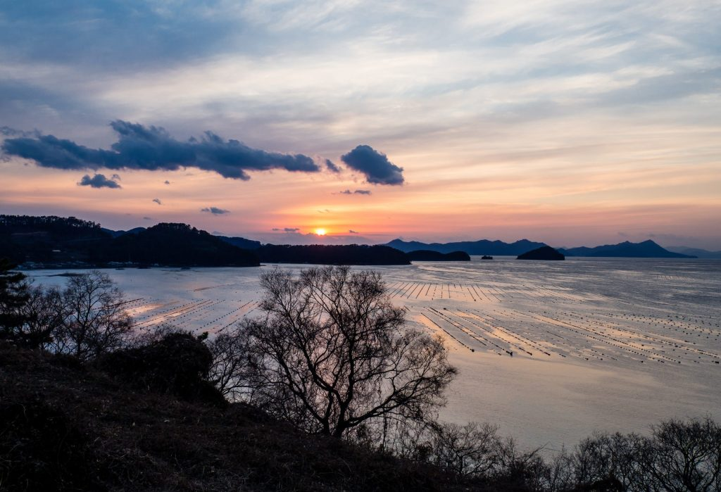 Tongyeong Sunset Spot