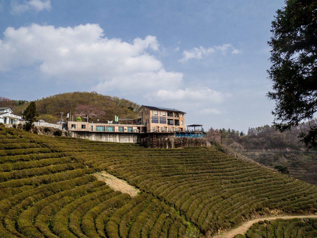 Pension at Myeongnyang Green Tea Field.