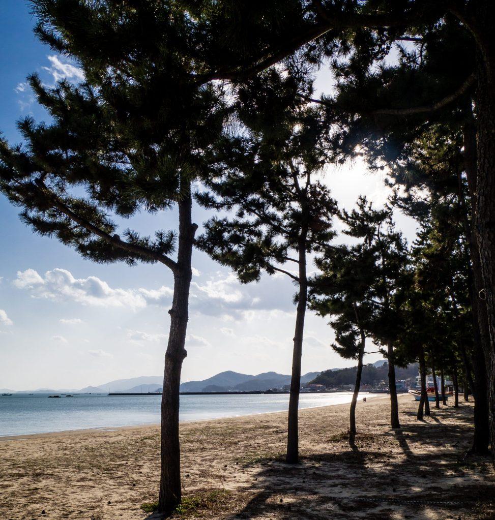 Campground at Yulpo Beach, Boseong