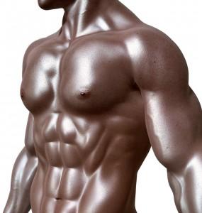 Image of muscular man