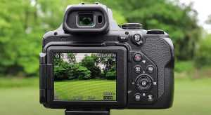 Nikon P1000 display
