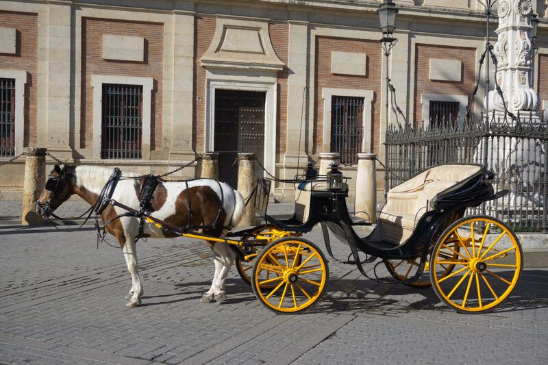 horse carriage in Seville