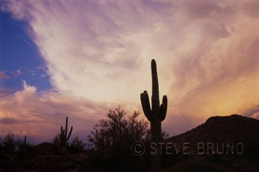 Dramatic sky over sonoran desert, Arizona