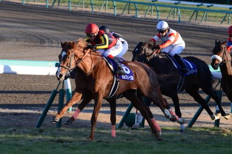 【競馬】菊花賞走った馬、不良馬場の疲れでもうしばらく走れないだろ・・・ロジユニ世代ダービー以上の負担?