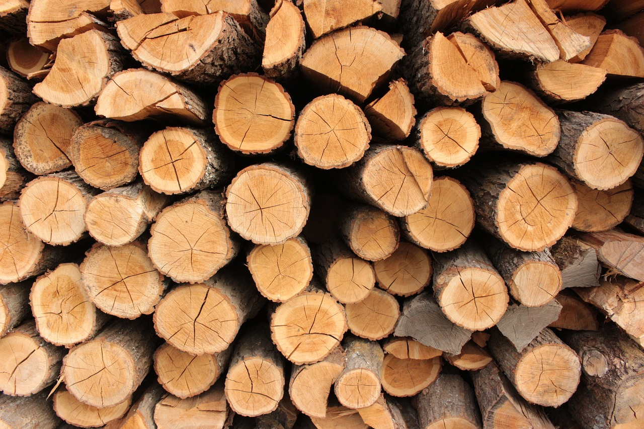 How Well Does Maple Wood Burn?