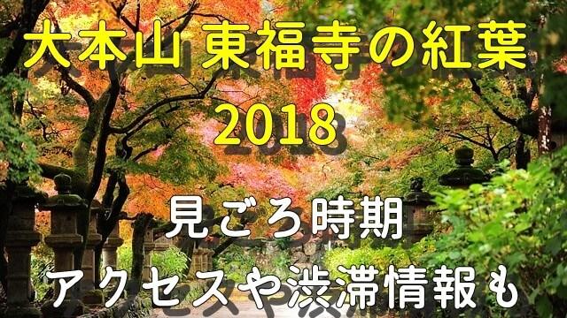 大本山東福寺の紅葉・見ごろやアクセス情報
