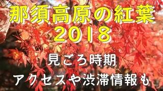 那須高原の紅葉2018の見ごろとアクセス情報