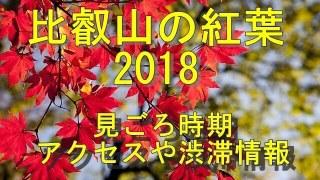 比叡山の紅葉2018見ごろやアクセス情報