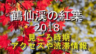 鶴仙渓の紅葉の見ごろとアクセス情報