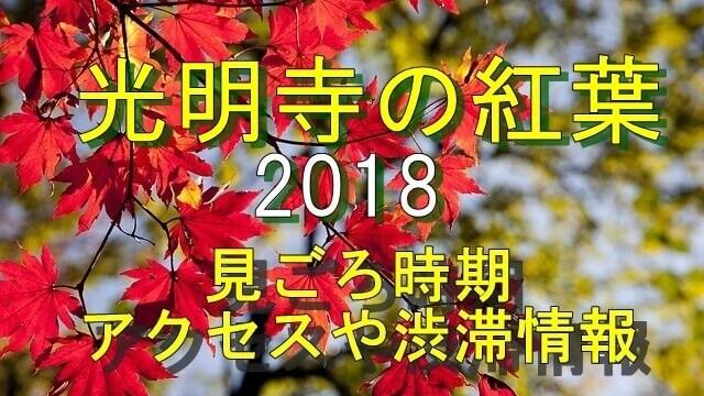 光明寺の紅葉2018見ごろ時期とアクセス情報