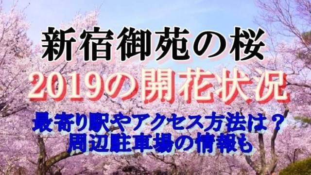新宿御苑開花状況