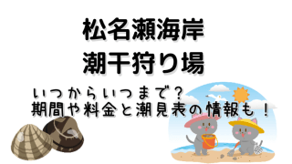 松名瀬海岸の潮干狩りでの期間や料金と潮見表についてご紹介しています