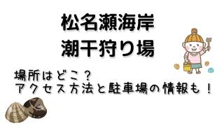 松名瀬海岸のアクセス方法と駐車場についてご紹介しています