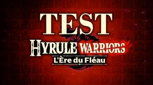 Test Hyrule WarriorsL'ère du fléau Switch