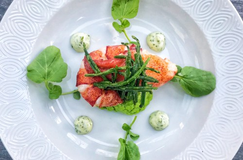 Lobster starter - lobster galore with pea purée, sea asparagus and cilantro mayo