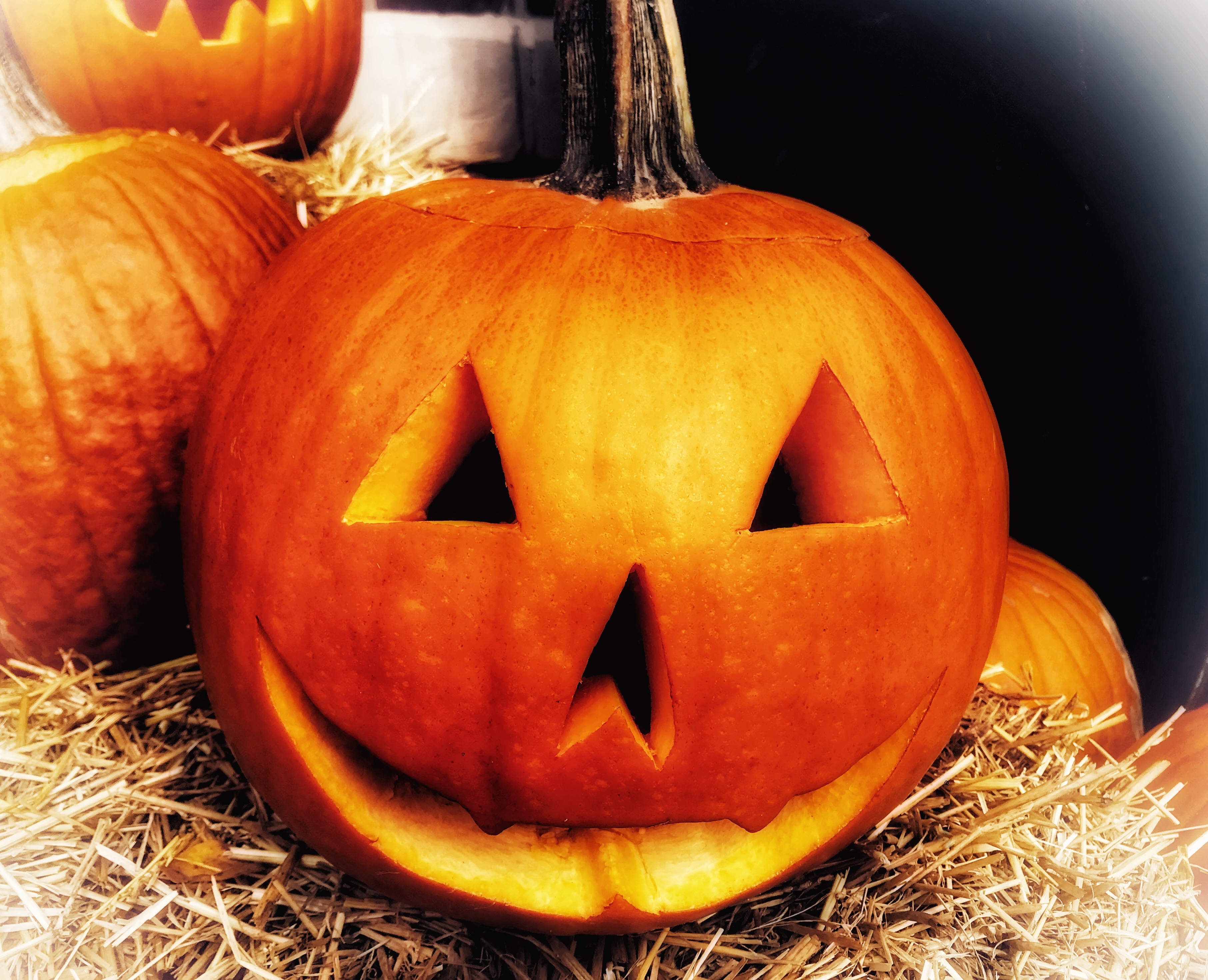 Halloween recipes - a selection of dinners, dessert and drinks for Halloween