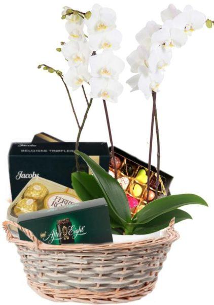 Gavekurven med orkidé og konfekt