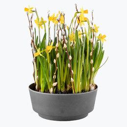 Send blomster på døra - Påskehilsen