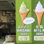 大王わさび農場(安曇野)で本わさびソフトクリームを食べる