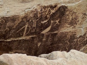 Petrified forest - glyphs