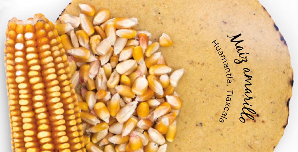 tortillas de maíz maíz amarillo