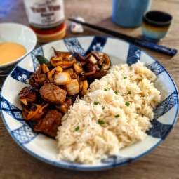 Hibachi Recipe