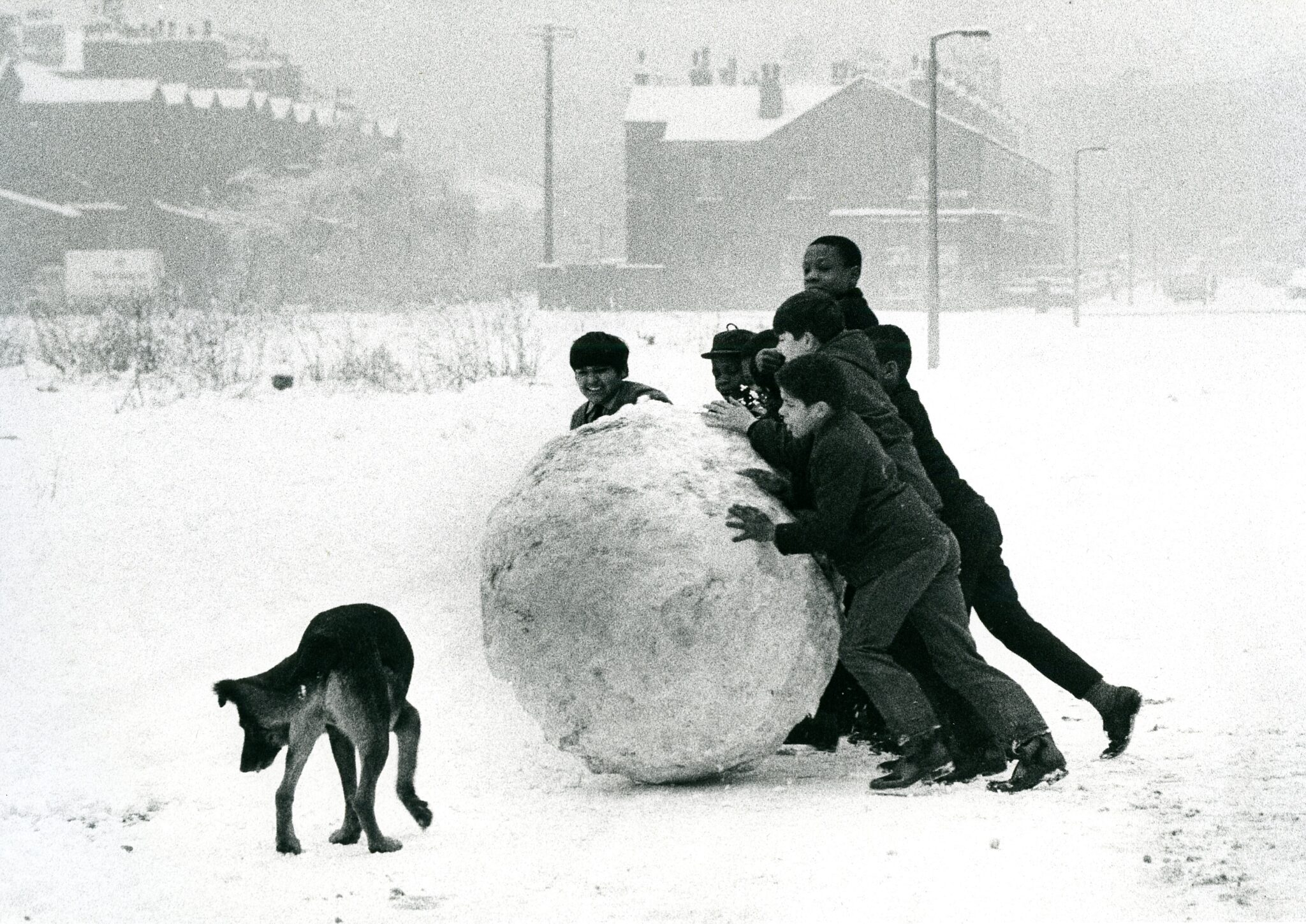 Big Snowball by Shirley Baker