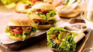 """欧米で大ブームの""""植物性のお肉""""! 「FAKE MEAT」使用の新メニュー2種が、 赤坂・和食ビストロにて6月18日より販売開始"""