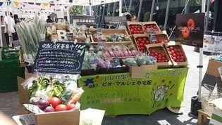 有機野菜の「ビオ・マルシェの宅配」、 「グランフロント大阪 うめきた広場」が市場になる 「Umekiki Marche - ウメキキ マルシェ - 」に出店