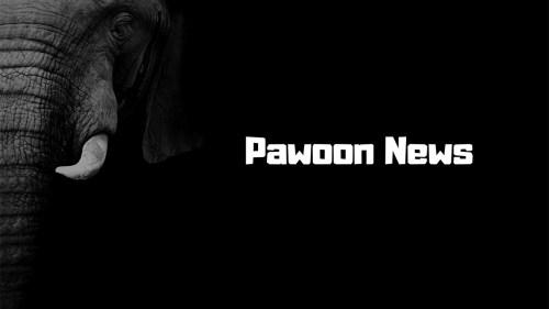 グルメプレスは『Pawoon News(パウォーン ニュース)』への記事配信を開始しました