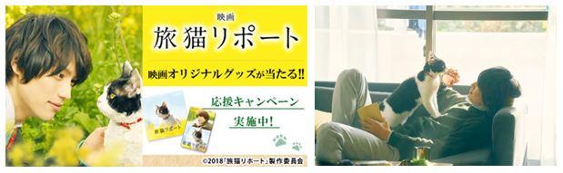福士蒼汰さん主演 スープはるさめ×映画「旅猫リポート」応援キャンペーン