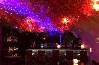 吉祥寺で秋満喫!真っ赤な紅葉とイルミのコラボイベント 『AKI NO YONAGA(秋の夜長)2018』10月3日スタート