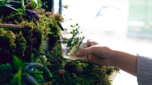 """【東京茶寮が""""植物園""""に】オリジナル煎茶モクテルをつくる「飲む植物園@東京茶寮」が2日間限定イベントとして開催!"""