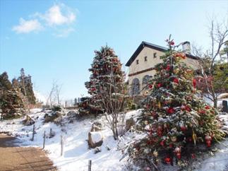 ヨーロッパの雰囲気と1000万ドルの夜景を楽しむ「六甲ガーデンテラスのクリスマス」11月3日(土) ~ 12月25日(火)