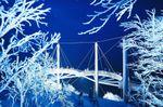星野リゾート トマム(北海道勇払郡占冠村) 360度、霧氷に囲まれた展望デッキ「Cloud Walk」での滞在 冬山の絶景を眺める「霧氷テラス」で霧氷のライトアップを実施 実施期間:2018年12月1日〜25日