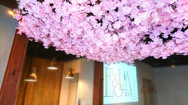 お花見ワインバルESOLA(エソラ)上野駅前店
