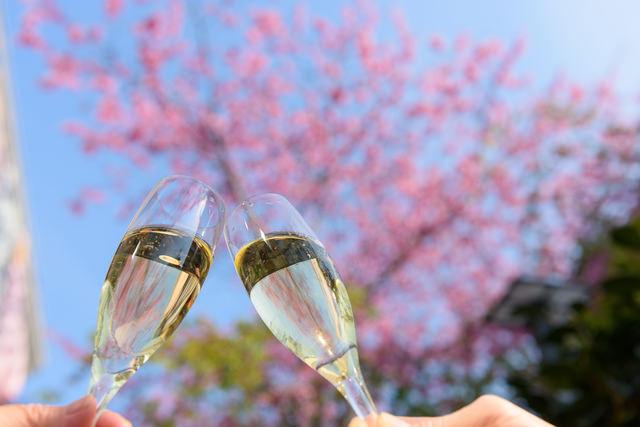 桜の季節、お花見には「スパークリングワイン」(46.5%)を持って出掛けよう