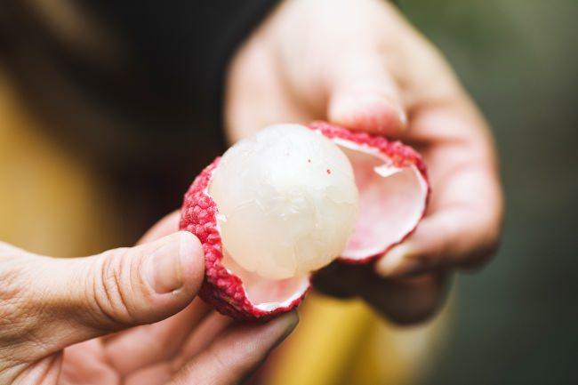国産ライチは白く透き通った肉厚の果肉と、あふれる果汁が特徴(写真:Waki Hamatsu)