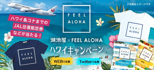 ~ハワイ州観光局 公認商品~ ポテトチップス FEEL ALOHA 発売記念 湖池屋 × FEEL ALOHA ハワイ島コナまでのJAL往復航空券が当たる! WEBで応募!ハワイキャンペーン実施