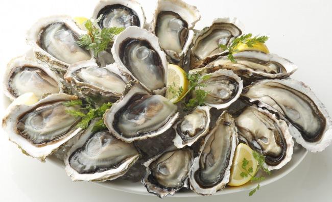 真牡蠣&岩牡蠣イメージ