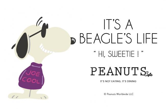 """""""スヌーピーの変装シリーズフェア""""を「PEANUTS Cafe」「PEANUTS DINER」全店で開催!第4弾となるラストは、サングラスがトレードマークの"""
