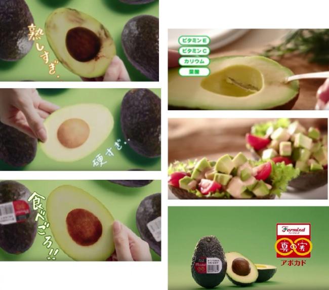 「食べごろアボカド」TVCM放送開始。食べごろ実感!キャンペーンも同時開催します!