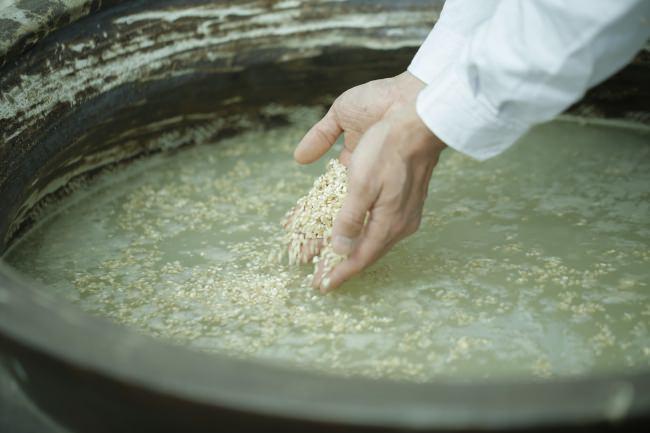 豊かな水と大地が育んだ、有機栽培玄米で仕込む。